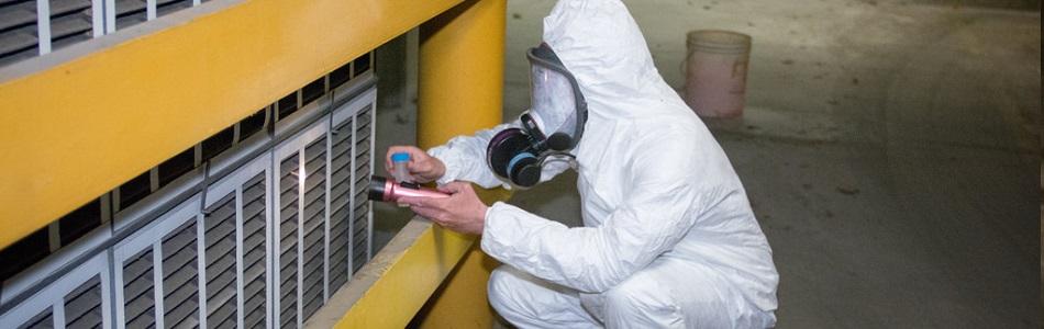 Asbestos Removal Perth